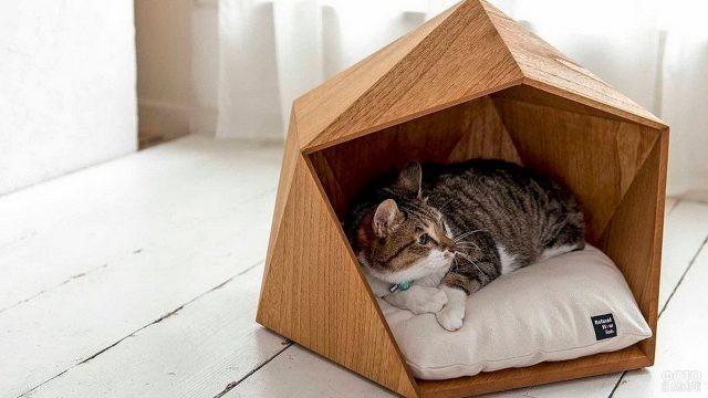 Современный дом для кошки
