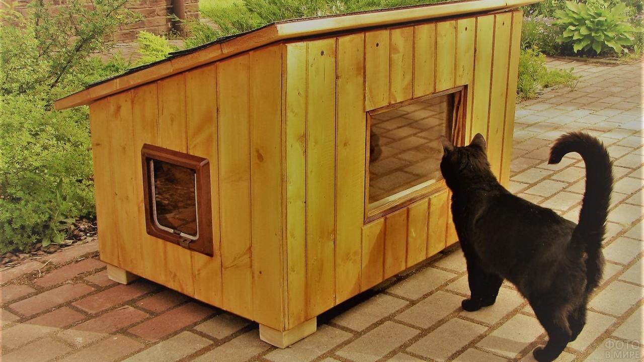Уличный кошачий дом на тротуаре