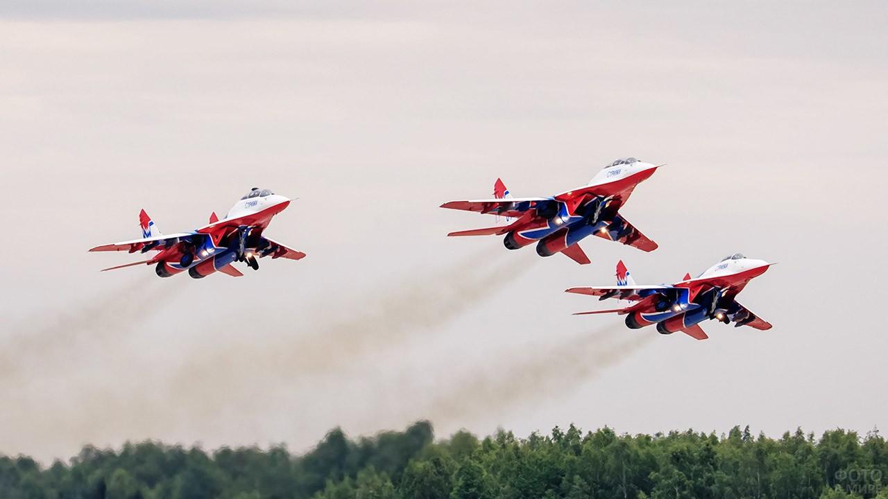 Истребители авиагруппы Стрижи во время выступления на авиашоу