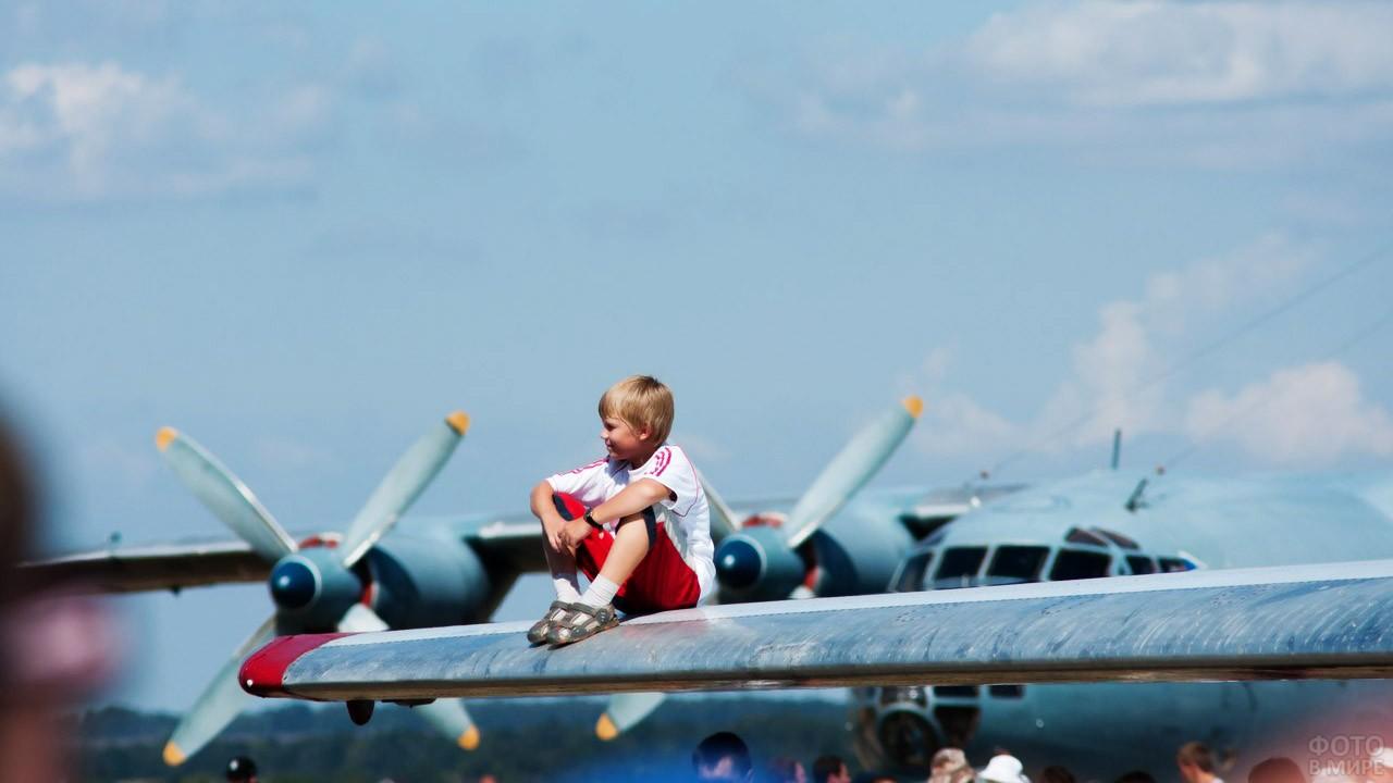 Мальчик на крыле самолёта-экспоната выставки в день ВВС