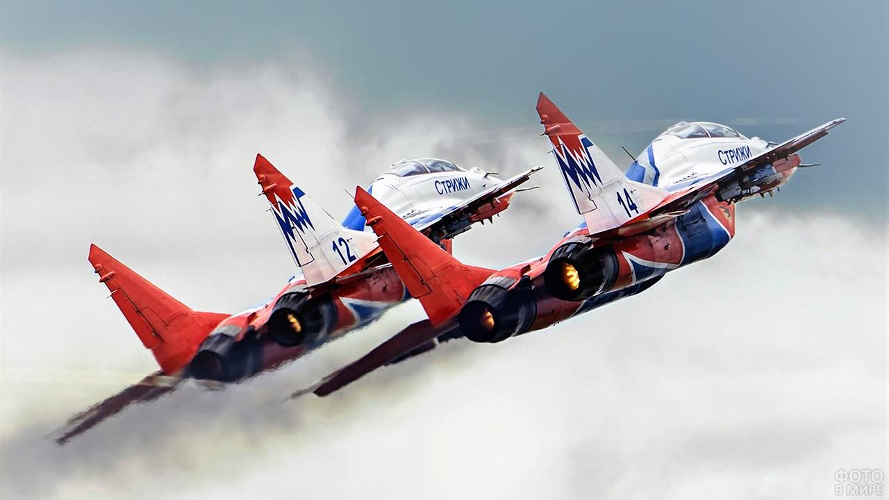 Выступление авиационной группы Стрижи
