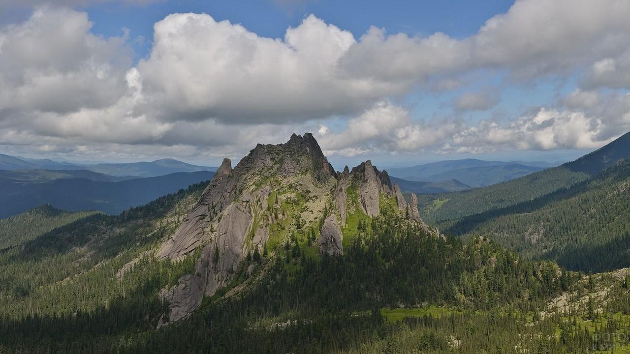 Большая гора среди хвойного леса