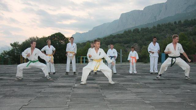 Юные каратисты на тренировочной площадке под открытым небом