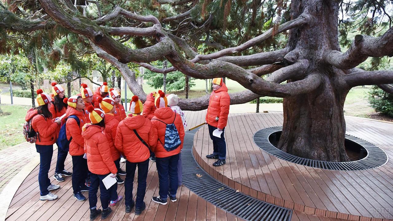 Учитель и школьники на уроке в парке