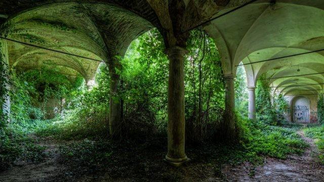 Свод с колоннами в зелени