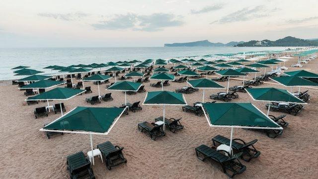 Зелёные зонтики и лежаки на песке