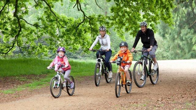Семейная прогулка на велосипедах