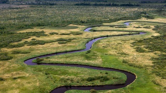 Река петляет через Васюганские болота