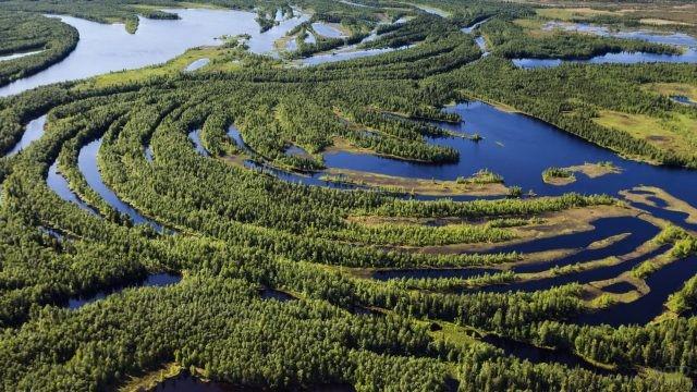 Сибирские болота с высоты птичьего полёта