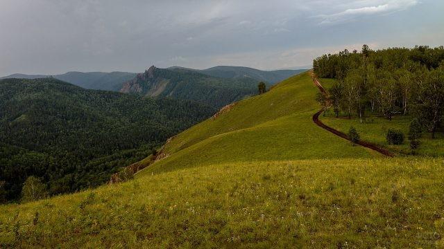 Торгашинский хребет под Красноярском
