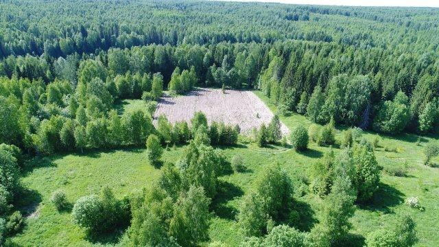 Вспаханное поле в Сибирской тайге