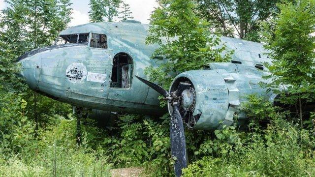 Старый самолёт в лесу