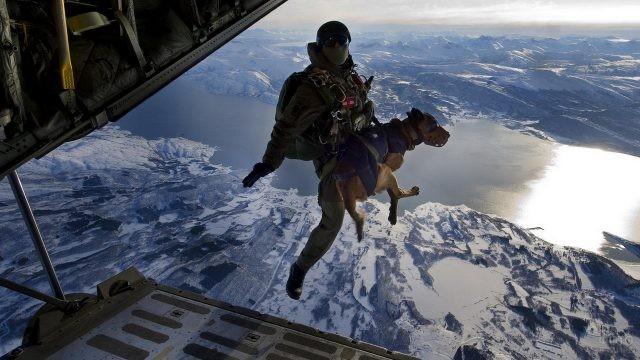Прыжок солдата с собакой