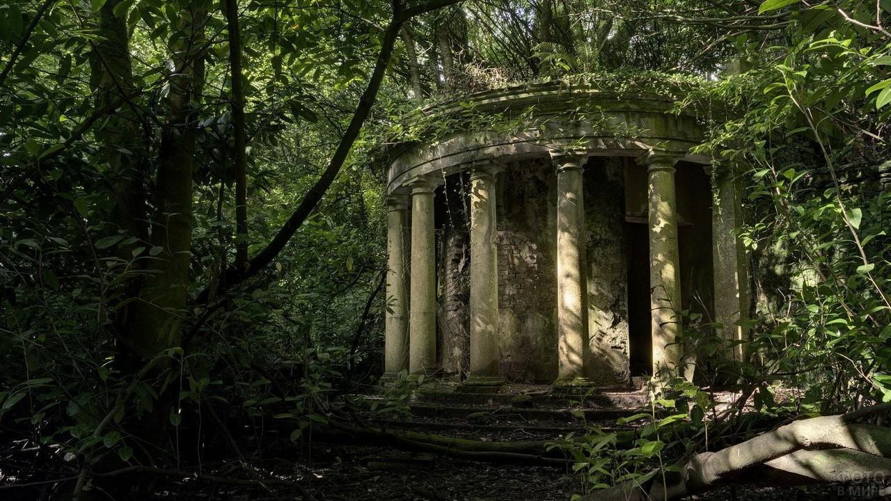 Беседка с колоннами в заброшенном парке
