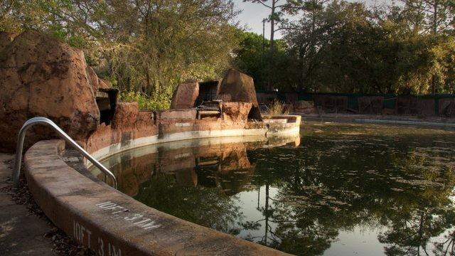 Заброшенный водоём в парке