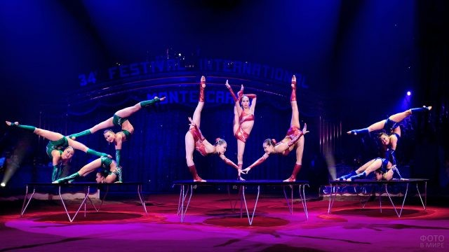 Выступление гимнасток в цирке