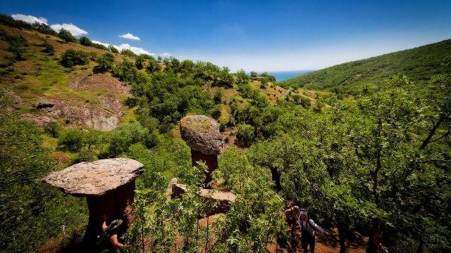 Каменные грибы в Долине Сотера