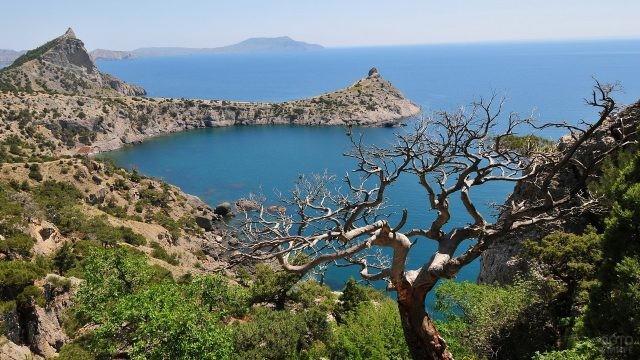Крымский хребет уходит в море