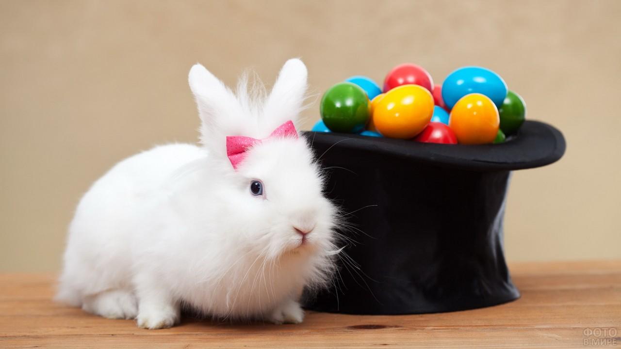 Пасхальный белый кролик