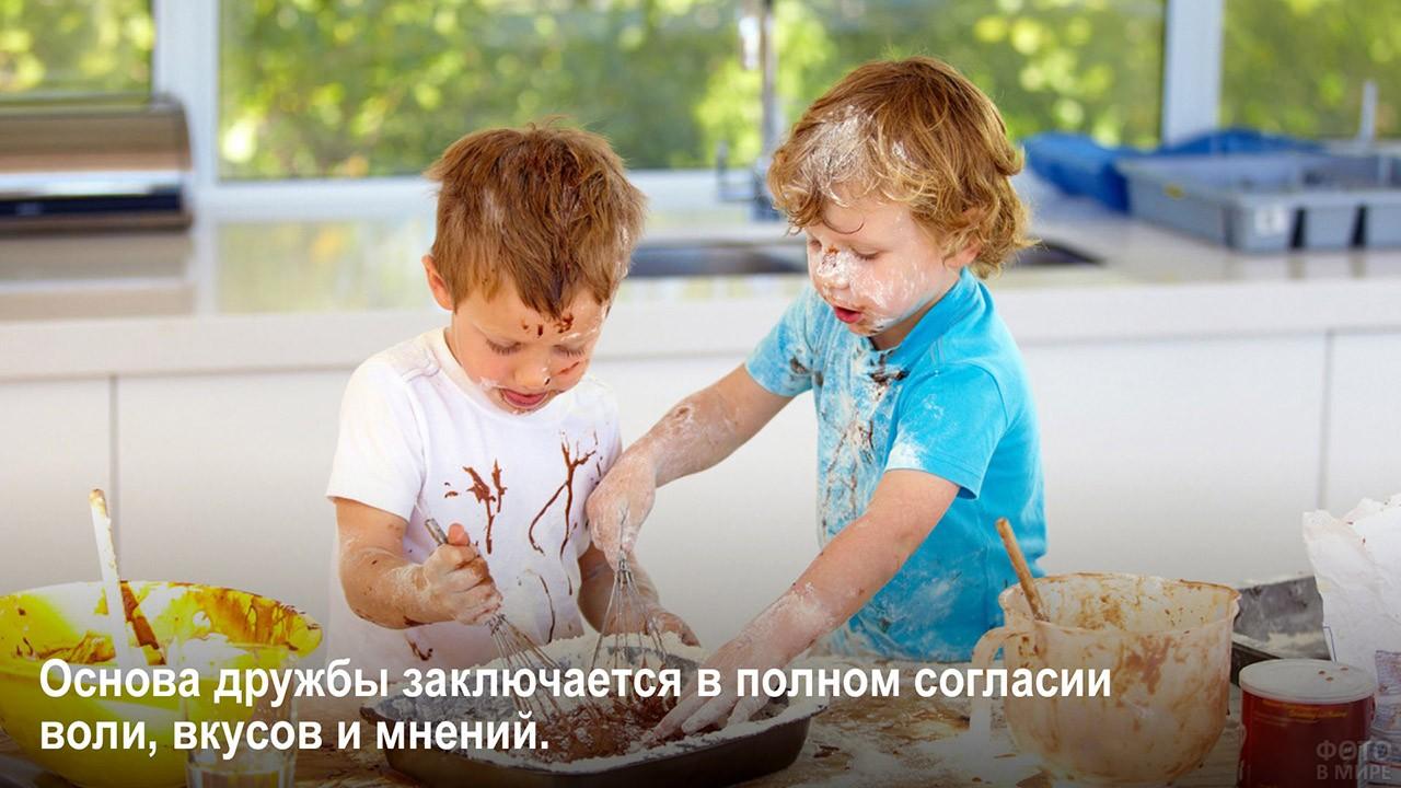 Согласие воли, вкусов и мнений - мальчишки готовят на кухне