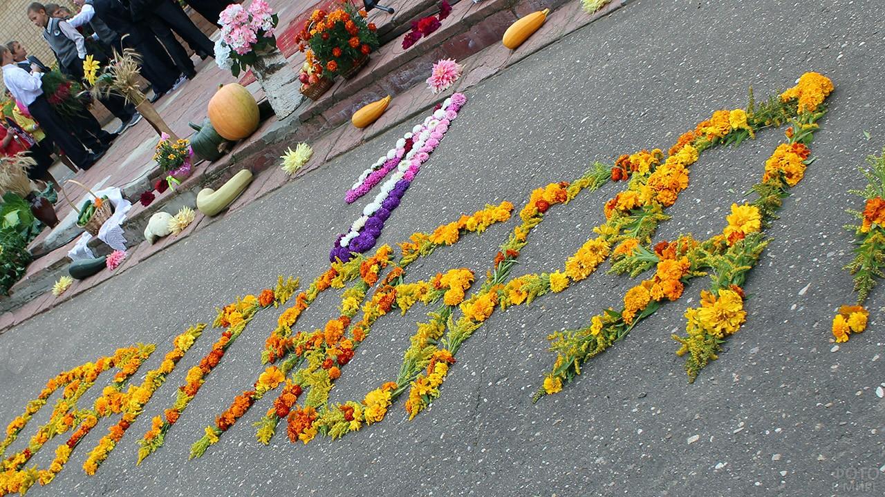 Надпись 1 сентября из цветов на асфальте