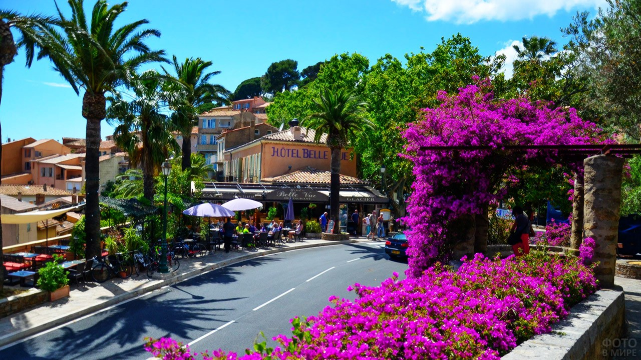 Цветущая улочка в курортной деревушке