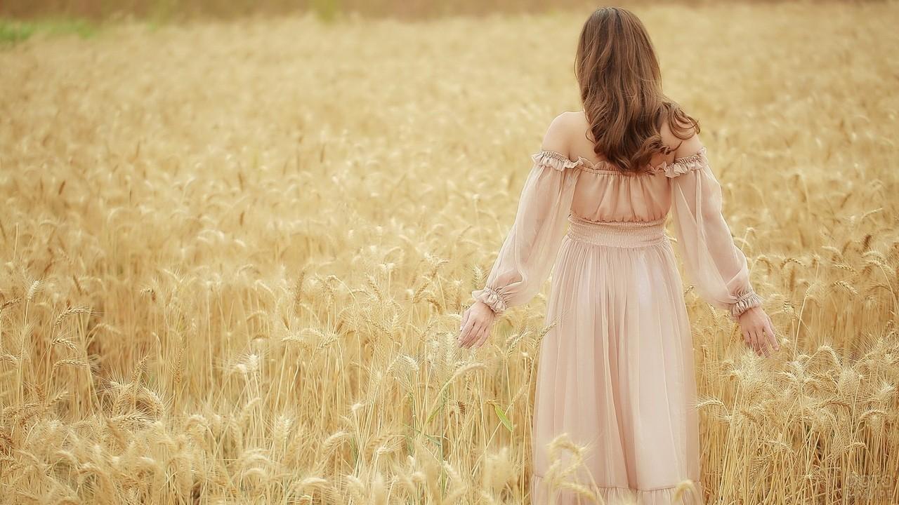 Нежная шатенка в пшеничном поле