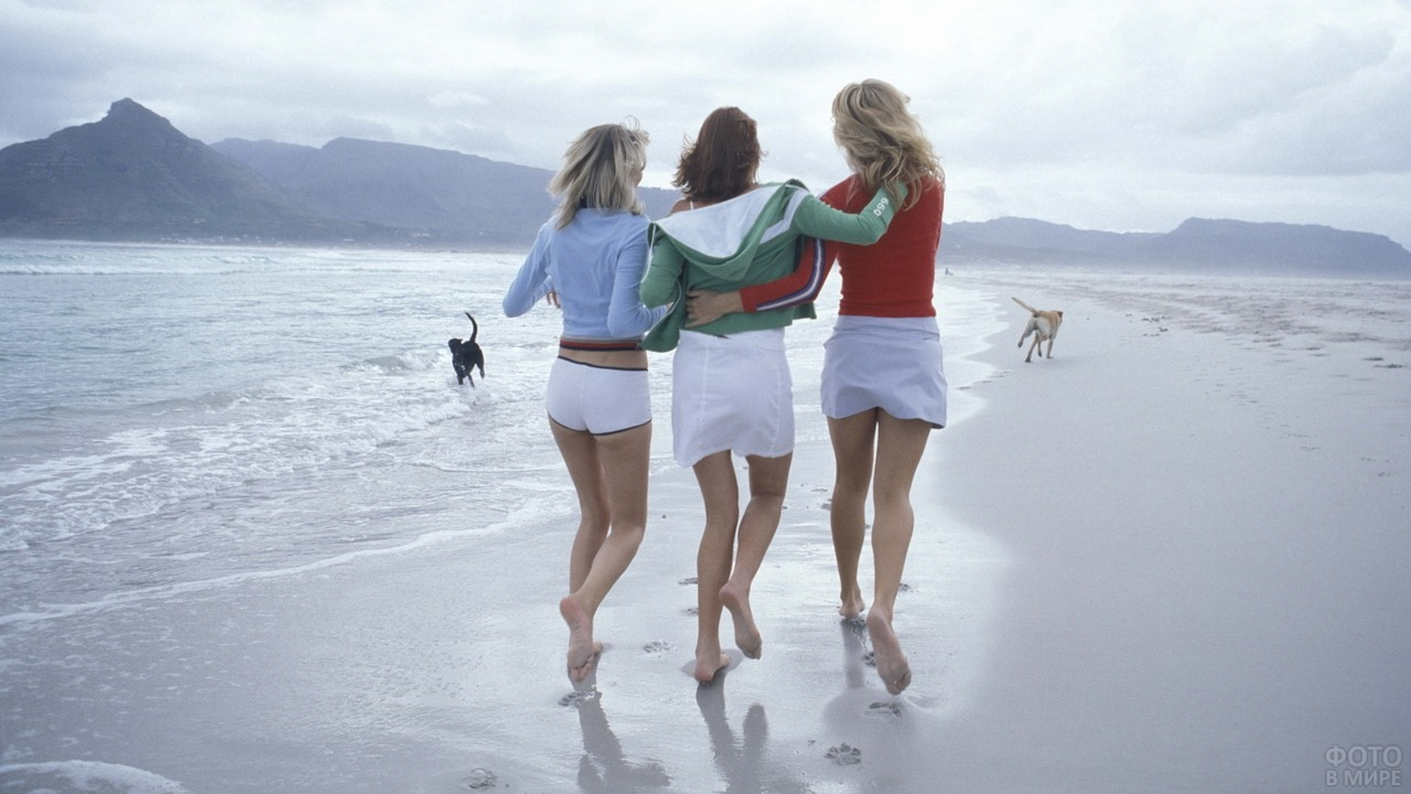 Подружки выгуливают собак на пляже