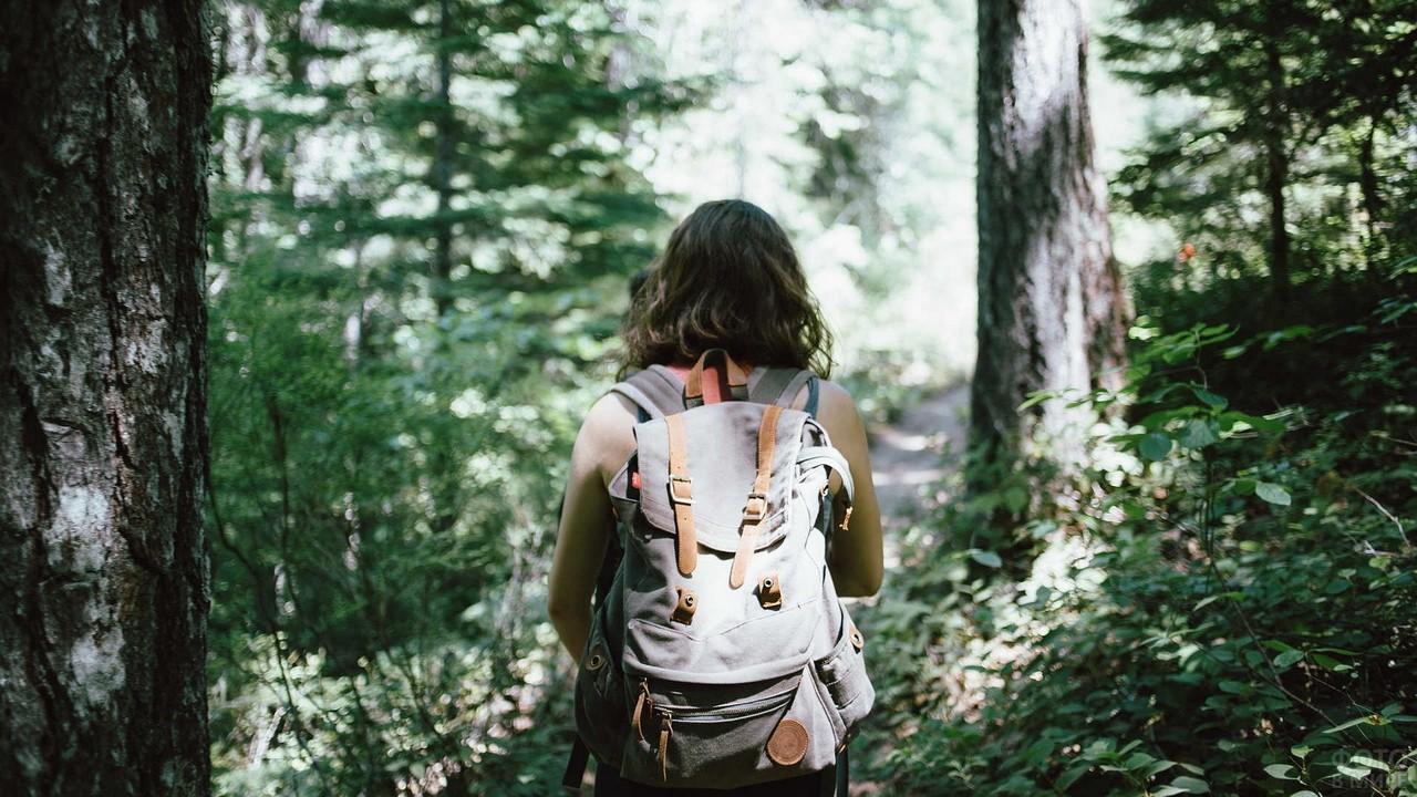 Туристка с рюкзаком идёт по лесу