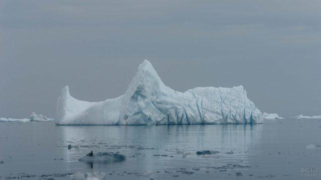 Айсберг в Баренцевом море