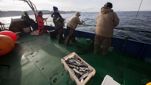 Мужчины рыбачат у Кольского полуострова