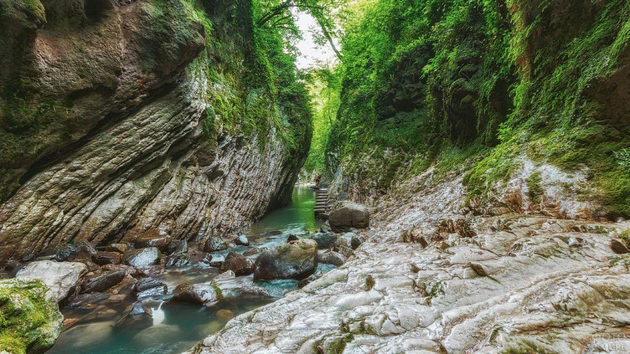 Прекрасная цветущая природа Свирского ущелья