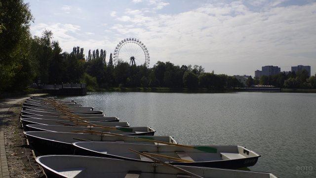 Прогулочные лодки на берегу пруда