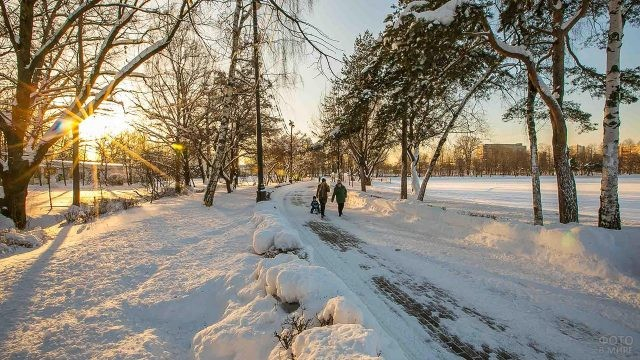 Солнечный день в заснеженном парке