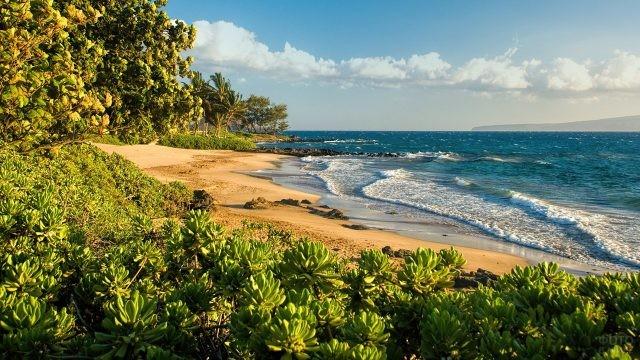 Дикий пляж на острове Мауи