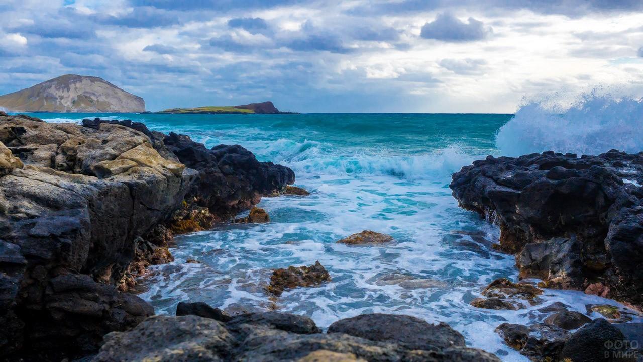 Каменистый берег острова Оаху
