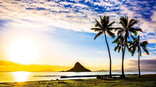 Рассвет над пляжем с пальмами