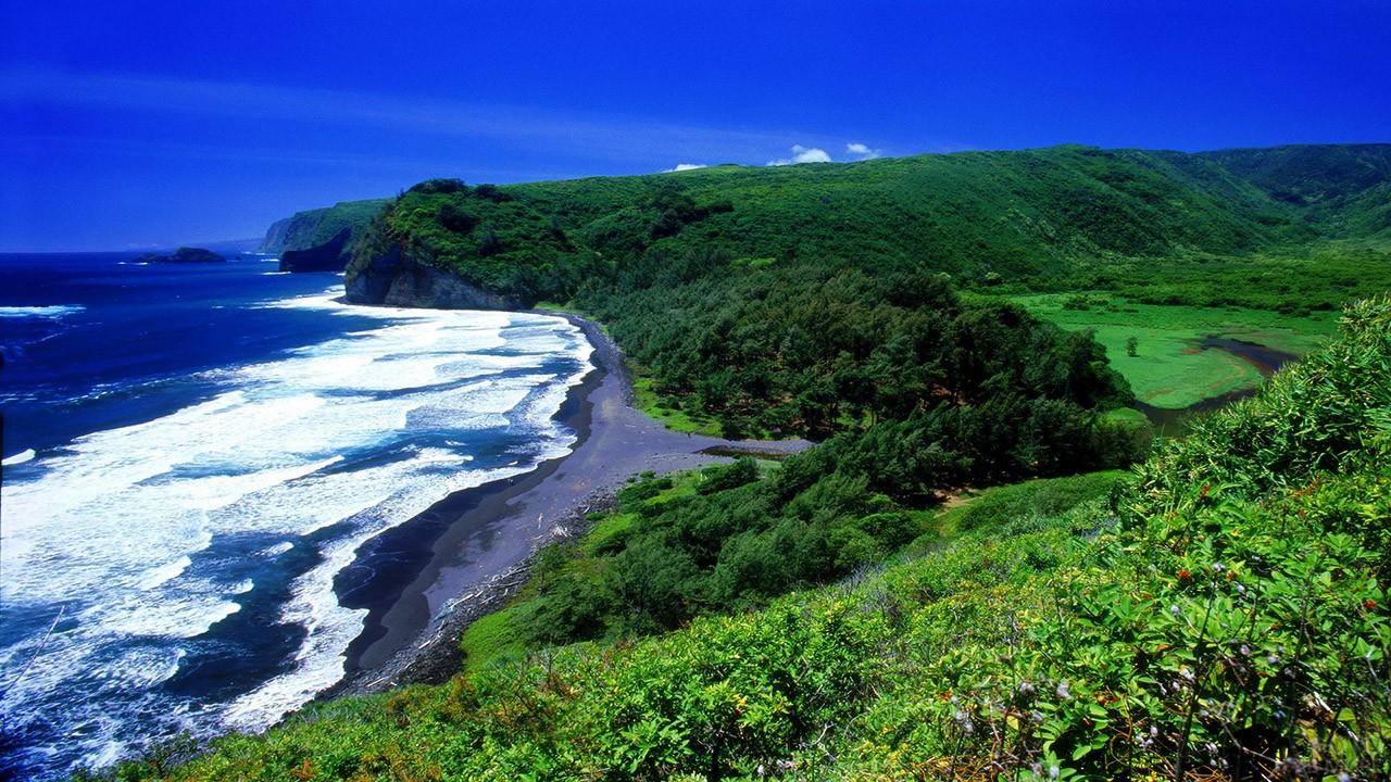Тропический лес у тихоокеанского побережья