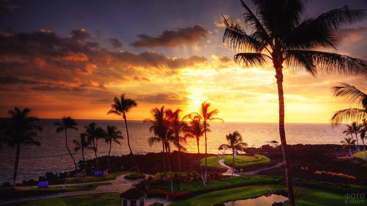 Закат над парком с пальмами