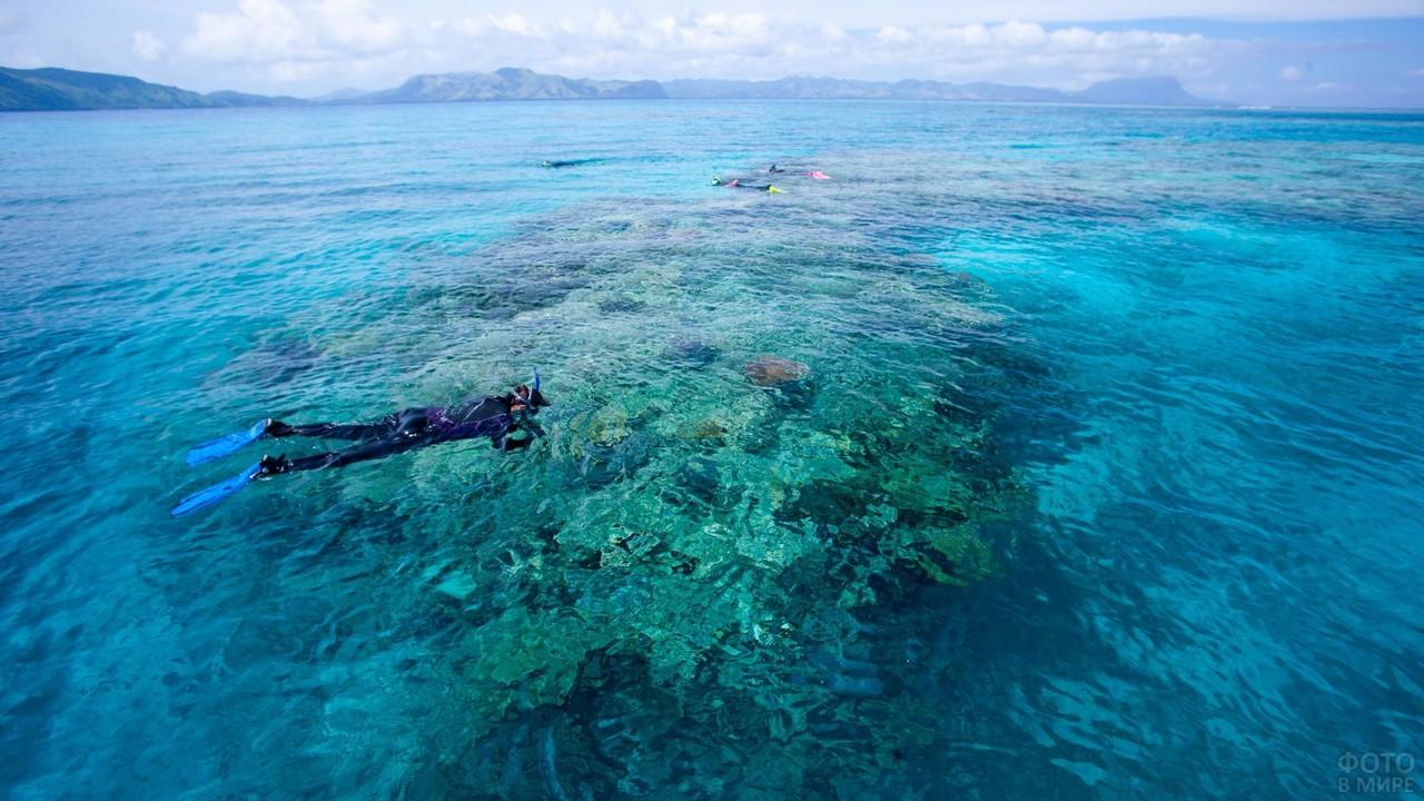 Аквалангисты в Тихом океане