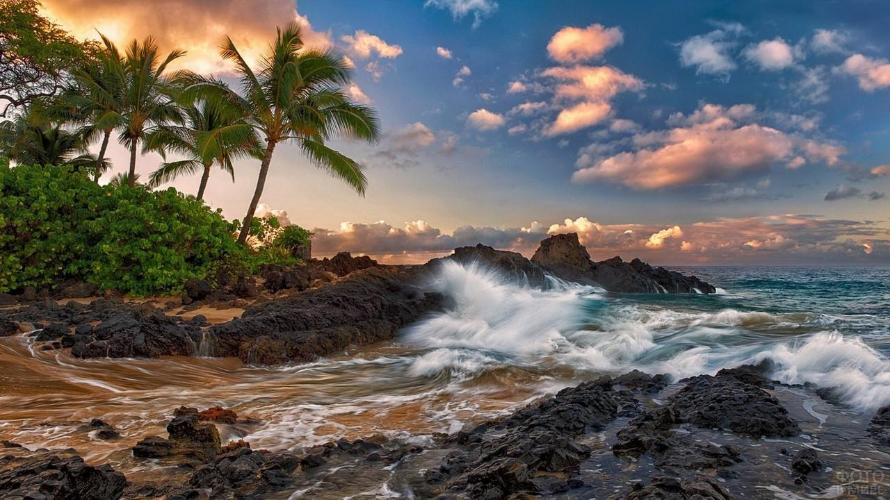 Волны Тихого океана бьются о берег