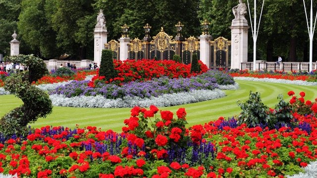 Цветущие клумбы в королевском саду
