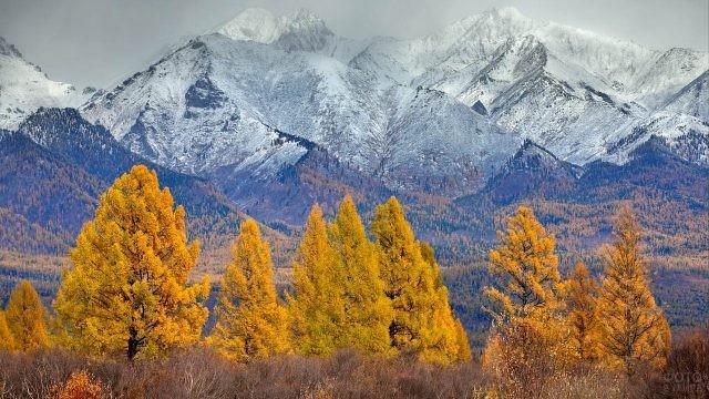 Осенняя природа в Саянах