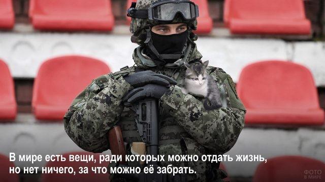 Ценность жизни - спецназовец с котёнком