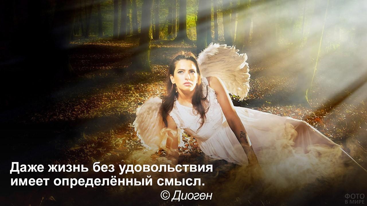 Жизнь всегда имеет смысл - девушка-ангел в тёмном лесу