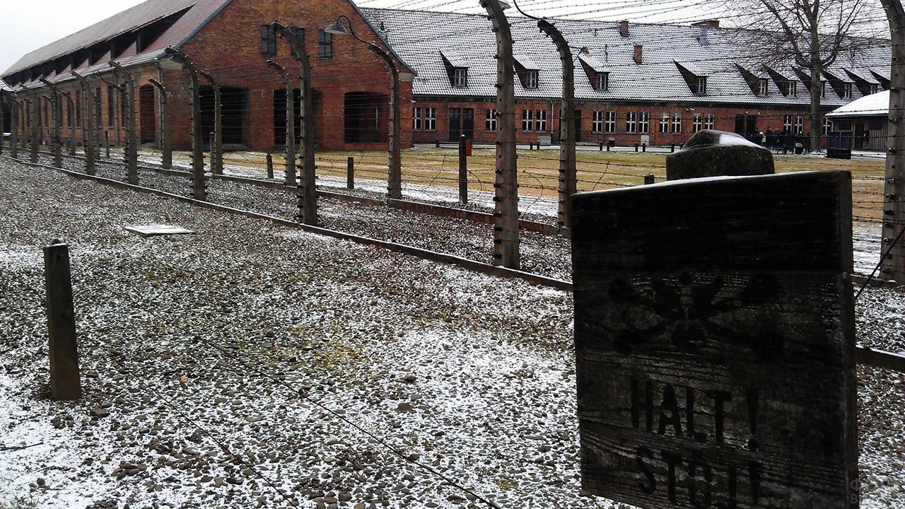 Припорошенный снегом двор музея-мемориала в наши дни