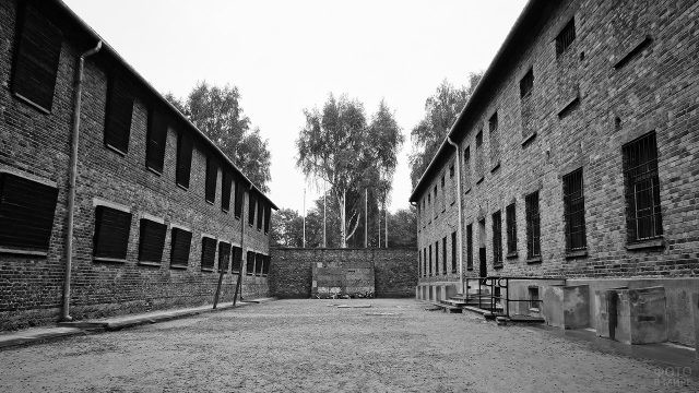 Стена расстрела в лагере смерти