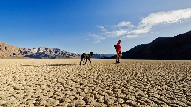 Туристка с собакой в калифорнийской пустыне