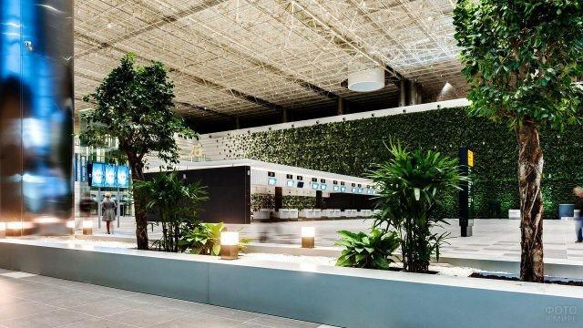 Живая зелень в зале регистрации пассажиров