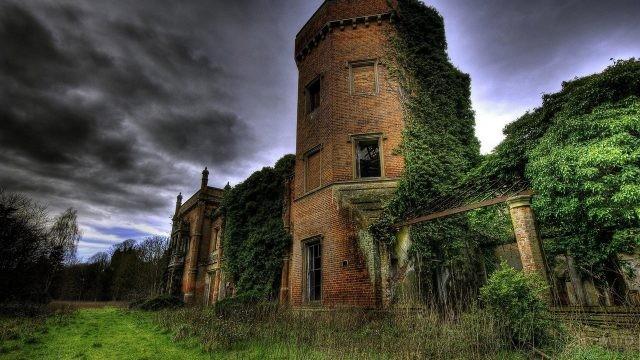Кирпичное заброшенное здание в зарослях
